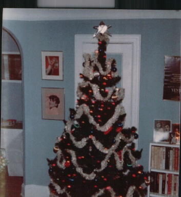 Please note the John's art project on top of the tree.